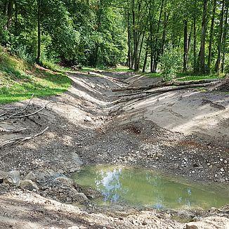 Wasserbau KW Grafenau, ökologische Ausgleichsmassnahmen